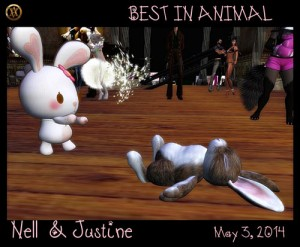 Nell-and-Justine-animals-may-3-2014